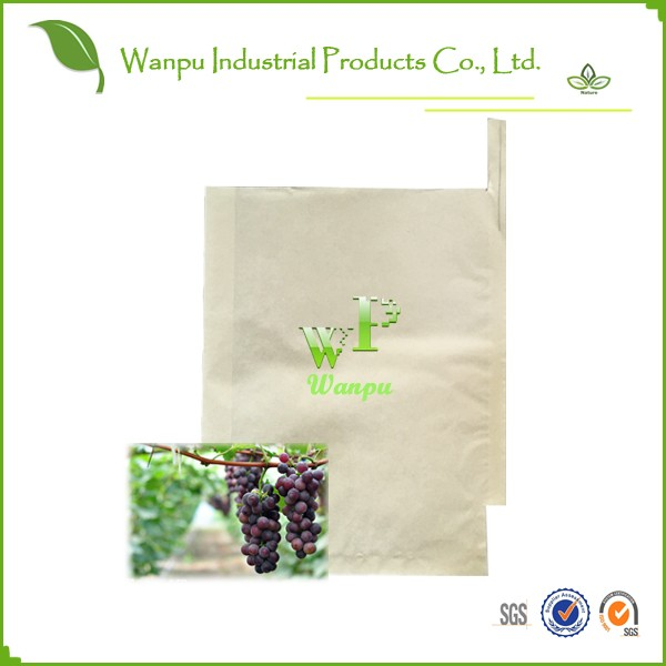 Fruit Protection Bag