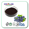 blue berry extract blueberry powder blueberry extract concentrate powder blueberry powder bulk
