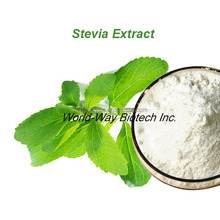 Golden Supplier making 100% natural sweetener stevioside 40% polyphenols as iso-chlorogenic acids Stevia Rebaudiana Extract