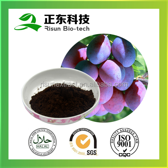 100% pure plum fruit Citric Acid 40% Brown to dark brown fine powderSmoke Plum Extract