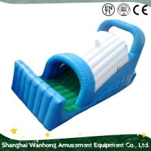 "78"" Slide Length Pvc 2 lanes inflatable water slide"