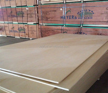 birch veneer plywood 18mm birch plywood for mid-east with great price