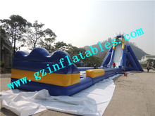 (Qi Ling) inflatable hippo water slide