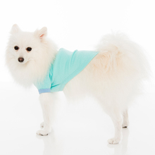 custom varsity girls coats wholesale nylon bomber jackets with style for pets