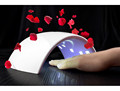 CE RoHS certificated 24 W uv led nail lamp