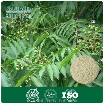 pure Chinese Soapberry Fruit extract / Soapnut Saponins