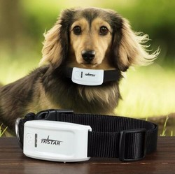 Most popular mini dog /cat /cow gps tracking device, free app and platform pet gps tracker with collar