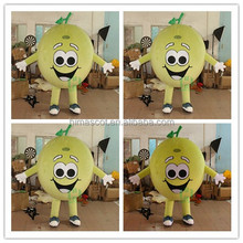 HI CE cartoon character funny fruit mascot costume for hot sale,adult size mascot costume with high quality