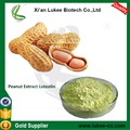 Natural Top Quality Peanut Shell Powder Extract Luteolin 98%, CAS: 491-70-3