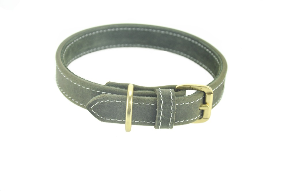 Top  Coolest Dog Collars