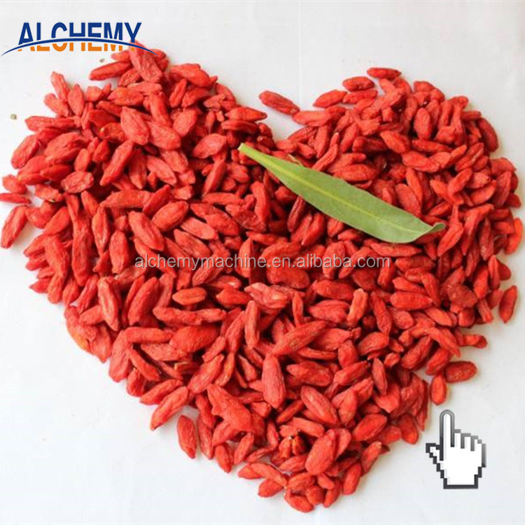 Best quality promotional ningxia goji berry extract