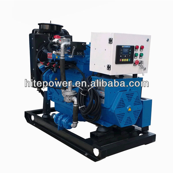 Global Service Automatic Start CHP 40kw biogas generator