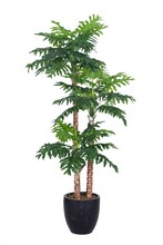 Good prices different types realistic artificial taro tree philodendron plant
