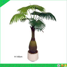 bottle fan palme tree wedding decorations with pot