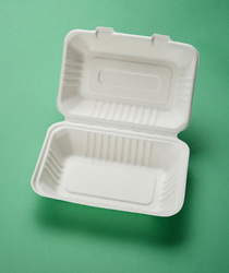 Disposable plate take away sugarcane pulp container