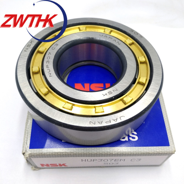 Japan NSK Chrome Steel Single Row Cylindrical Roller Bearing NUP209