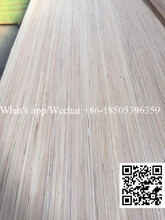 New design face recon keruing veneer rolls made in China