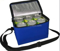 Insulated 6 pack fitness picnic cooler/ice tote bag with durable hard line