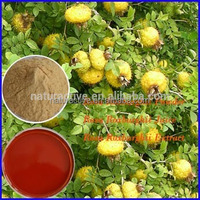 Natural Vitamin C Rosa Roxburghii Extract