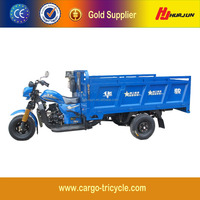 China Hot Sale Air Cooling Tricycle/Moto Cargo 300cc/Cargo Carrier Tricycle