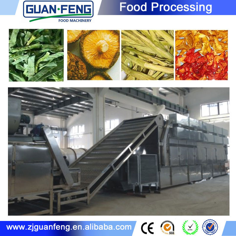 Food Machinery Belt Type Dehydrator Garlic Processing Machines