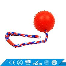 2017 hot sales Rubber Funny pet toy ball