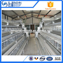 A type america chicken layer battery cage for broiler chicken