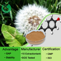 Pincredit Supply High Quality Dandelion Root Extract