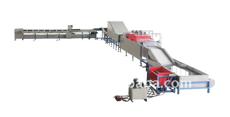 CE approved fruit and vegatable grading machine