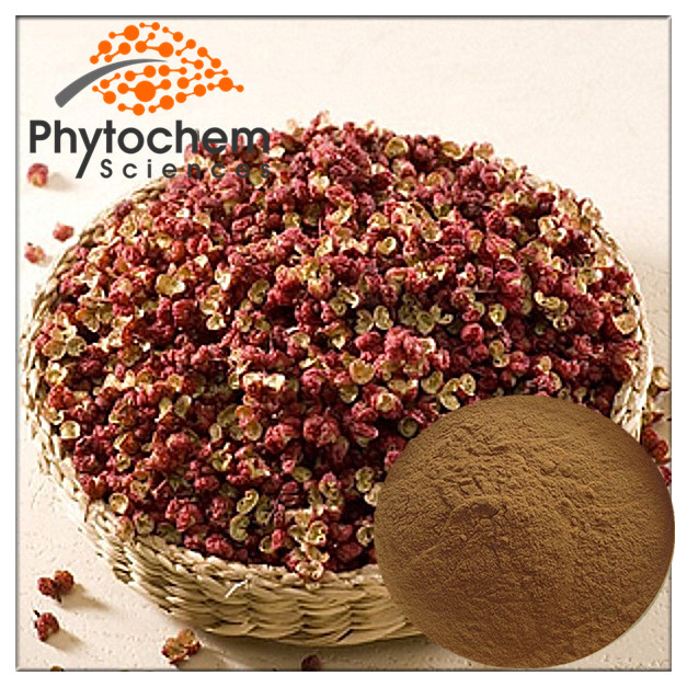 Fresh Dried Thyme Leaves Extract Powder 20%-99% Thymol