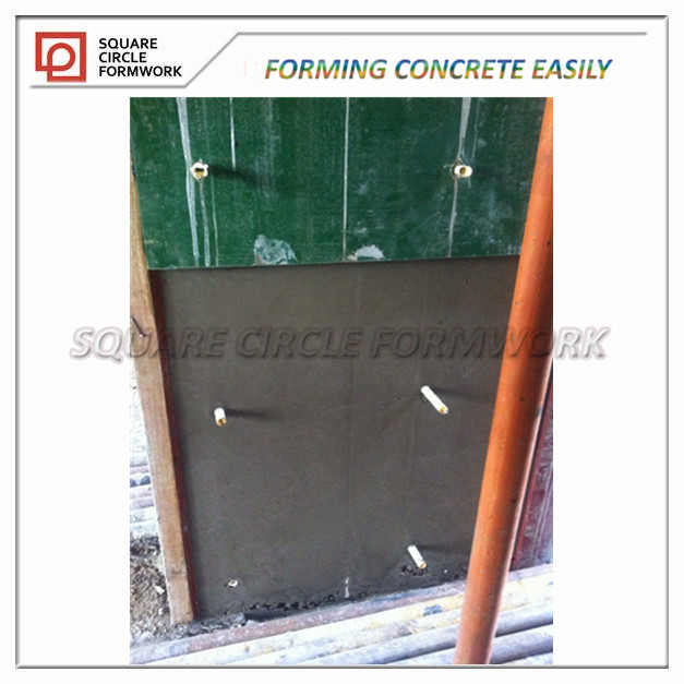 Pp plastic faced plywood wood composite