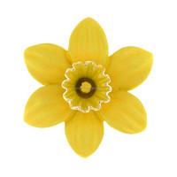 2017 Fashion Custom Bulk Gold Plating Yellow Oil Drop Daffodil Flower Brooch