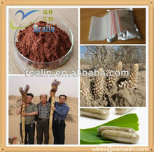 Herb Sex powder cistanche tubulosa extract/herba cistanches