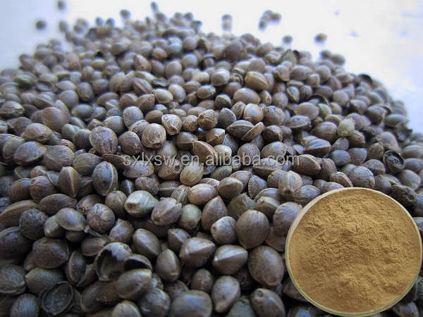 2015 high quality natural latest organic hemp seeds extract