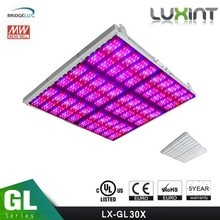 shenzhen led grow lights With 3w,5w Chip 200w-1600w best led grow lights 2016,cheap 2000w led grow lights for sale