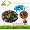 Items for Sale in Bulk Herbal Capsules Rhodiola Rosea Extract