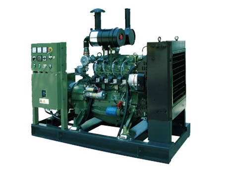 Diesel fuel and Air-cooled cold style diesel generator