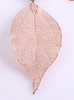 Rose gold Tree Leaf