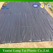 SHANDONG FACTORY! pp ground cover/pp weed mat/woven weed mat roll