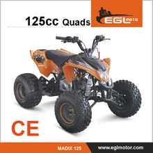 Mini Moto Atv 50cc with EEC Certification