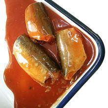 canned sardines in oil 125g with high quality