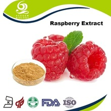 diet supplement new products blaeberry extract in bulk