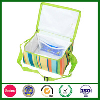 Cute Fashionable Cooler Bag with Customized Design for Frozen Food SC1638