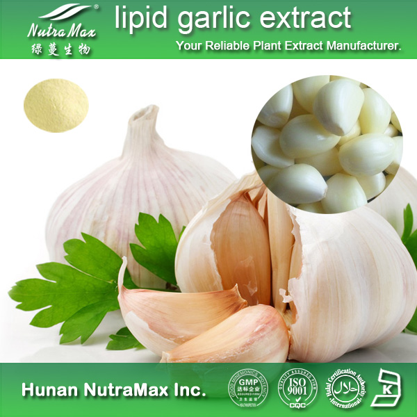 lipid garlic extract - NutraMax Supplier