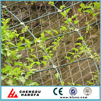 wire mesh manufacturer /wire mesh fence