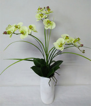 Realistic Artificial Orchid Flower