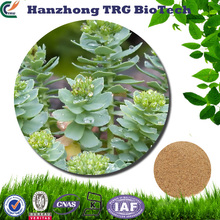 BV Certificated scientific name of plants rhodiola rosea extract for wholesales