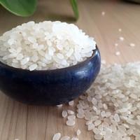 China Fragrant Organic Round Shaped Sun White Rice