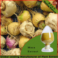 Yellow maca for men sexual health and sex medicines product