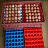 plastic tray egg/Plastic egg tray for chicken egg use